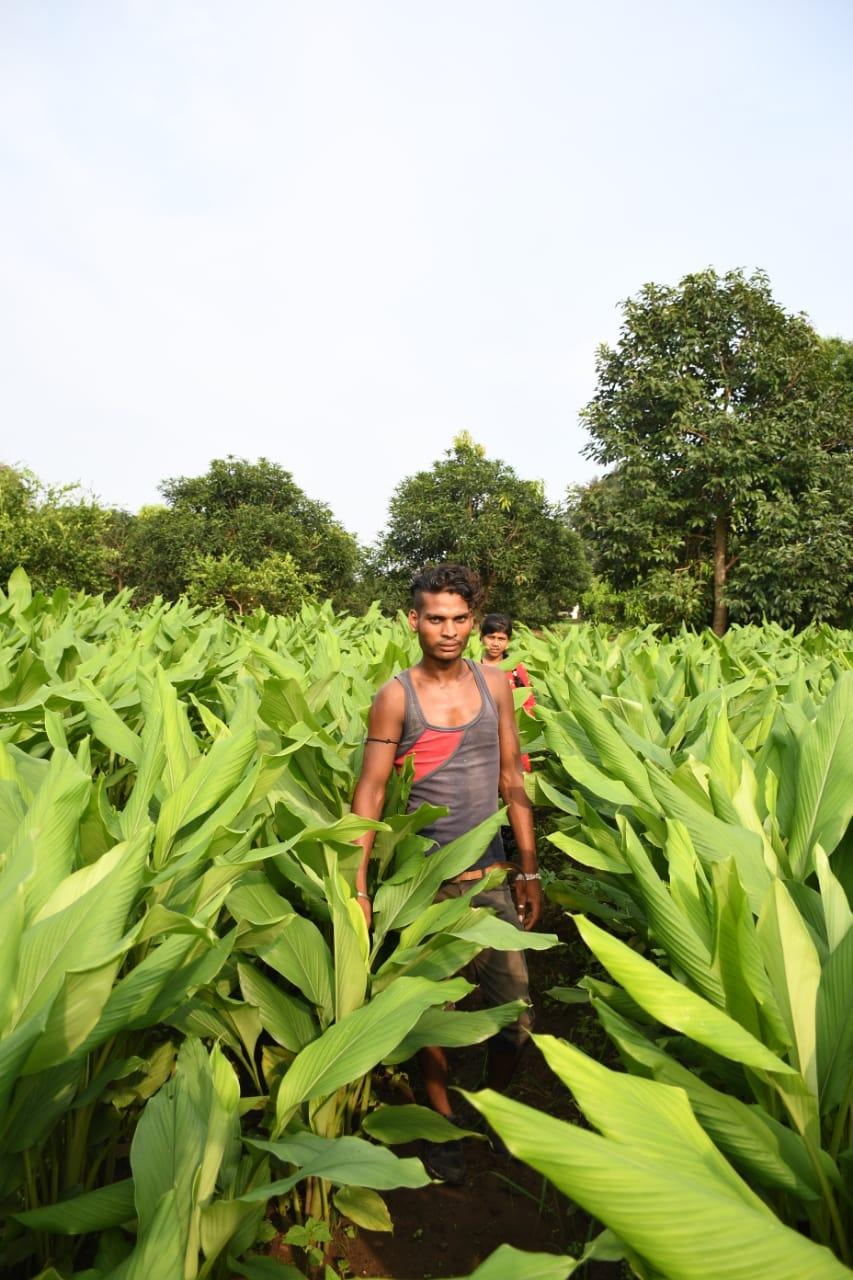 Sarvayu Farmer