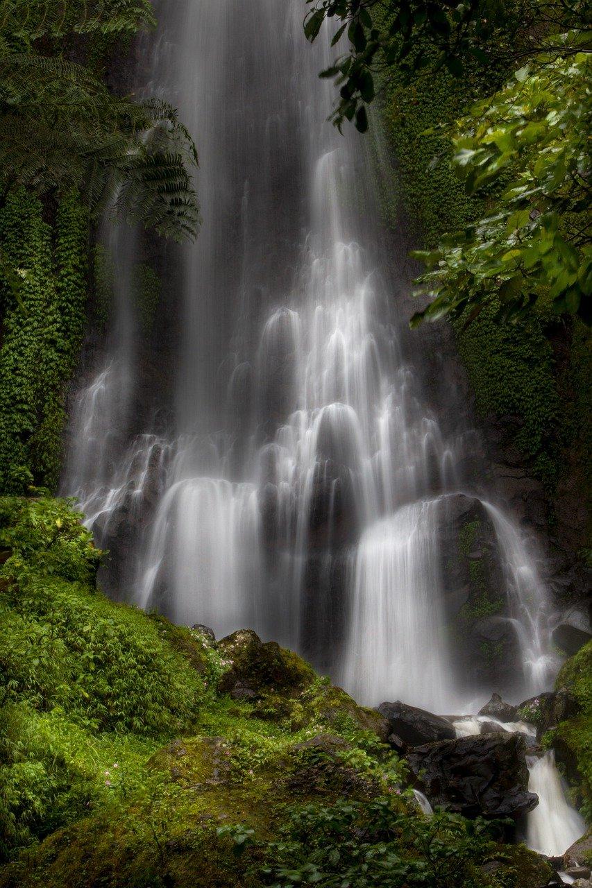 waterfall, water, tree-5229807.jpg